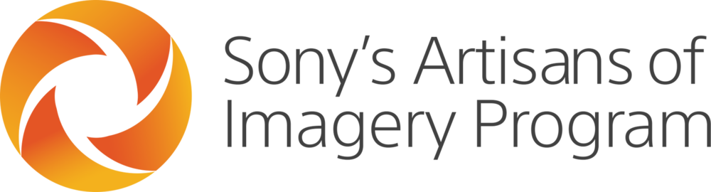 Sony_AOI_Logo_h.png