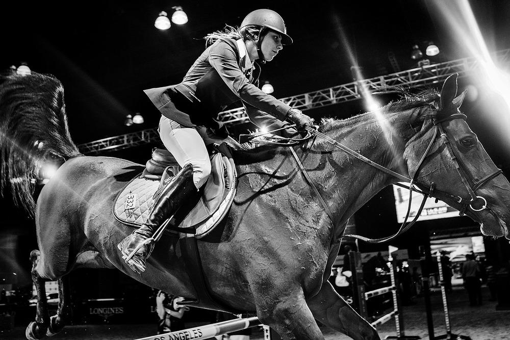 HorseWeb_008.JPG