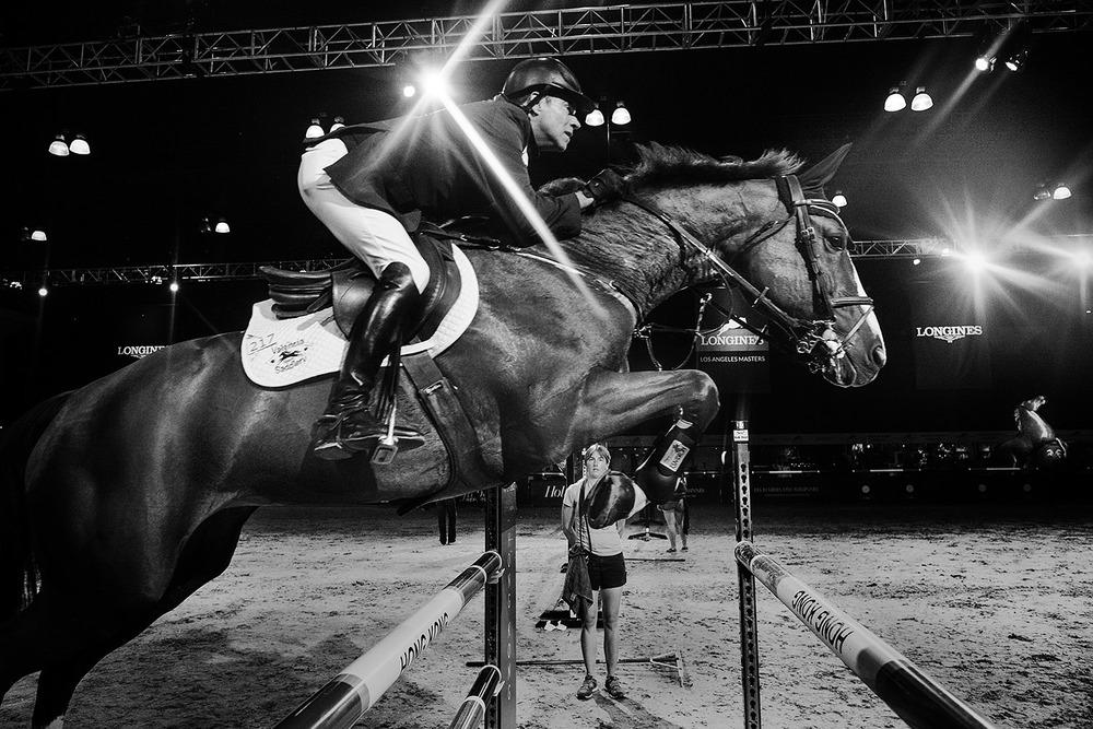 HorseWeb_012.JPG