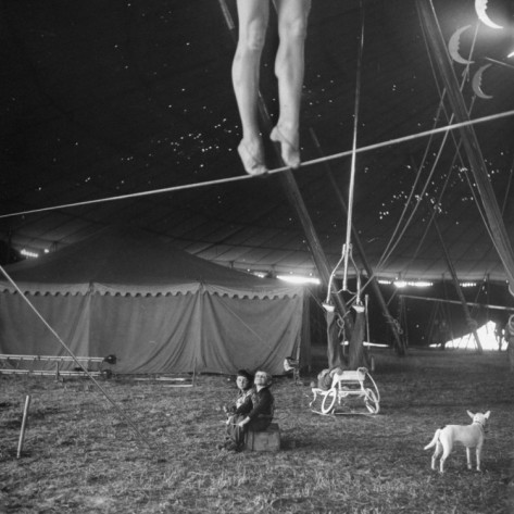 hollyhocksandtulips: Tightrope Photo by Nina Leen