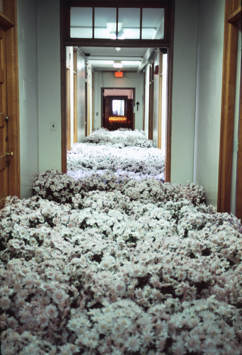 Bloom by  Anna Schuleit  is an installation in the soon to be demolished Massachusetts Mental Health Center. Anna and her team filled the center with a variety of nearly 28,000 plants and invited past patients and family to reflect on their time there.
