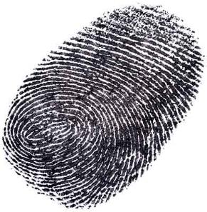 ss-36224968-fingerPrint.jpg
