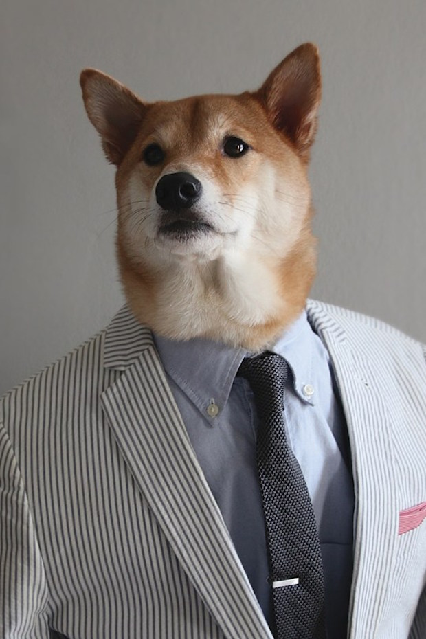 Menswear-Dog-04-GQ-23Apr15_b_540x810.jpg
