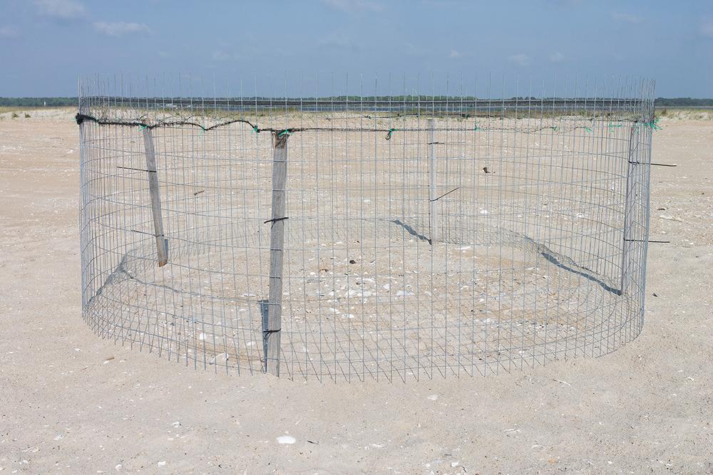 CompletedExclosure1.jpg