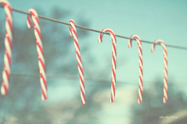candy cane line
