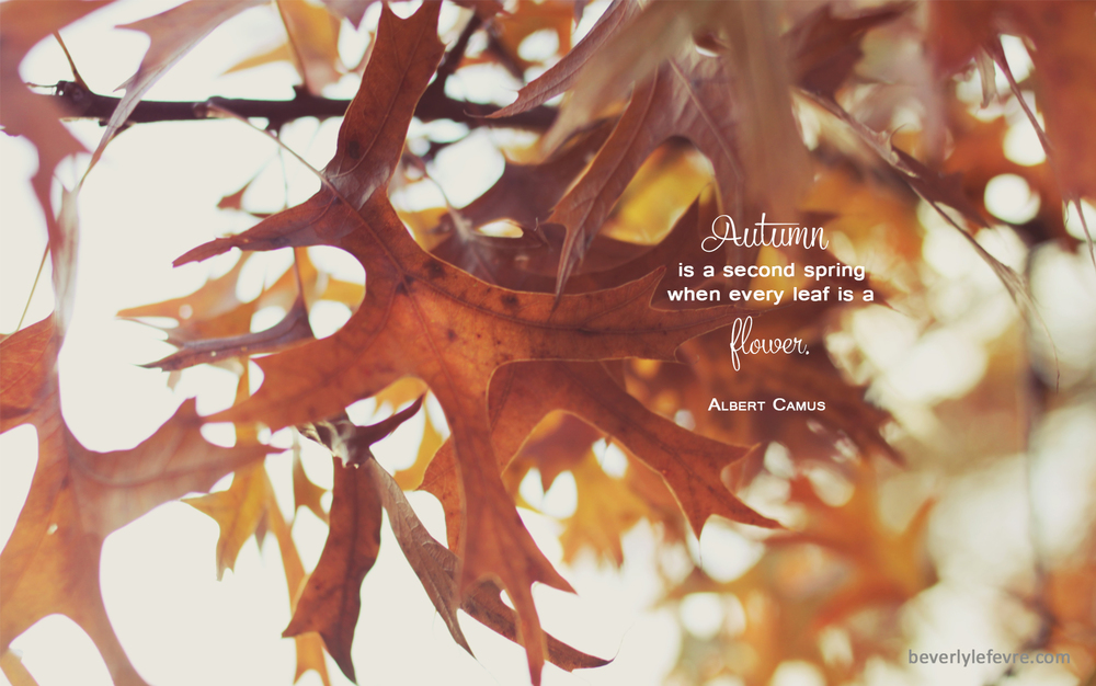 Autumn Desktop And Smartphone Wallpapers Beverly LeFevre