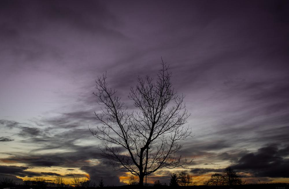 Beaverton Sunset | 365 Project | Jan 26th, 2013