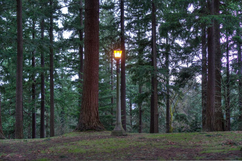 Single Lamp Post