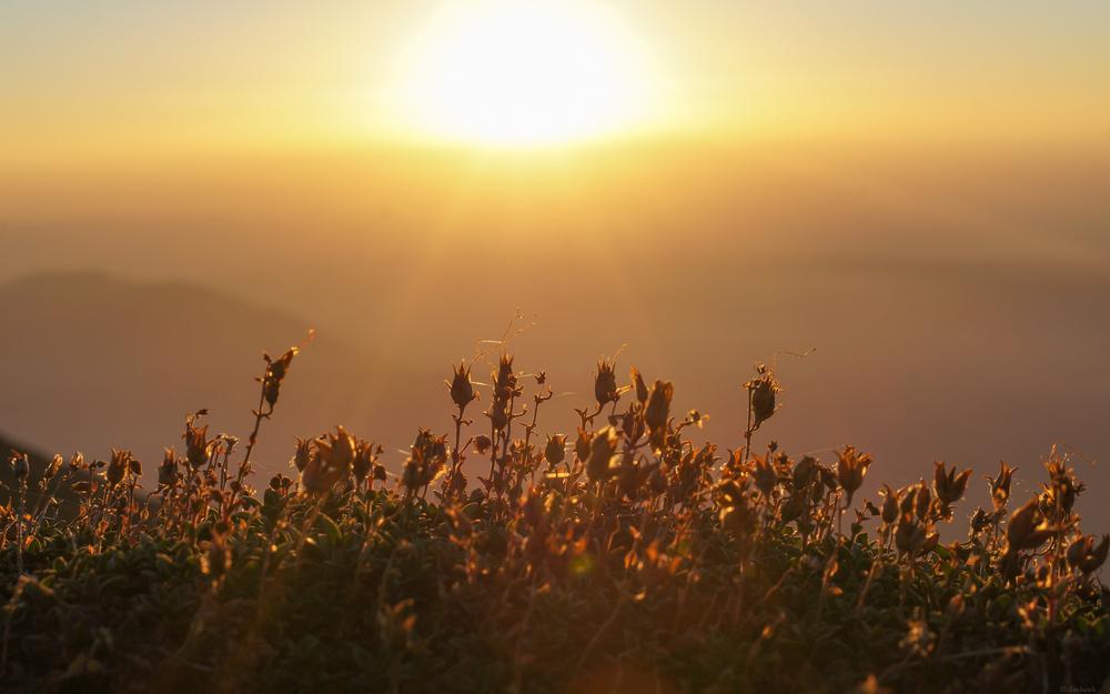 Steens Sunrise Desktop.jpg