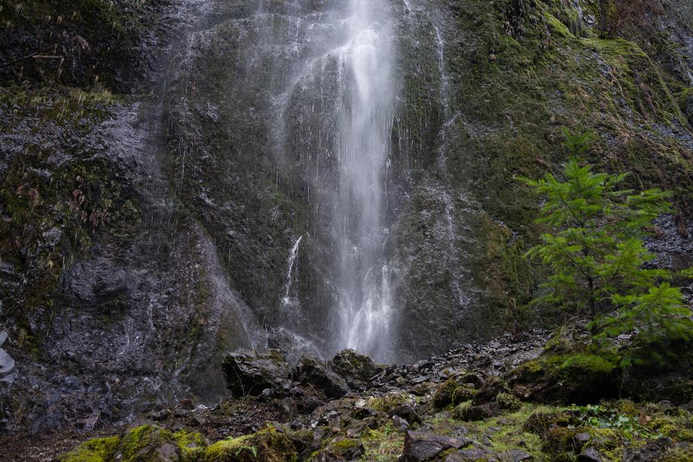 Wahclella Falls Trip-15.jpg