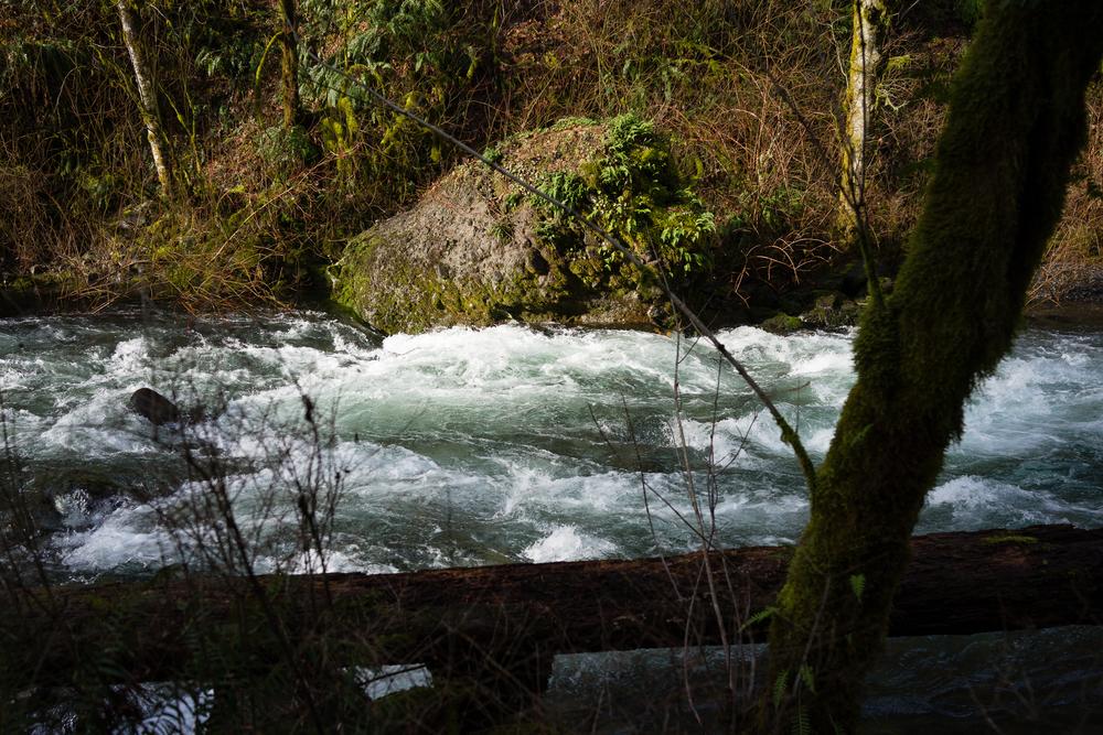 Wahclella Falls Trip.jpg