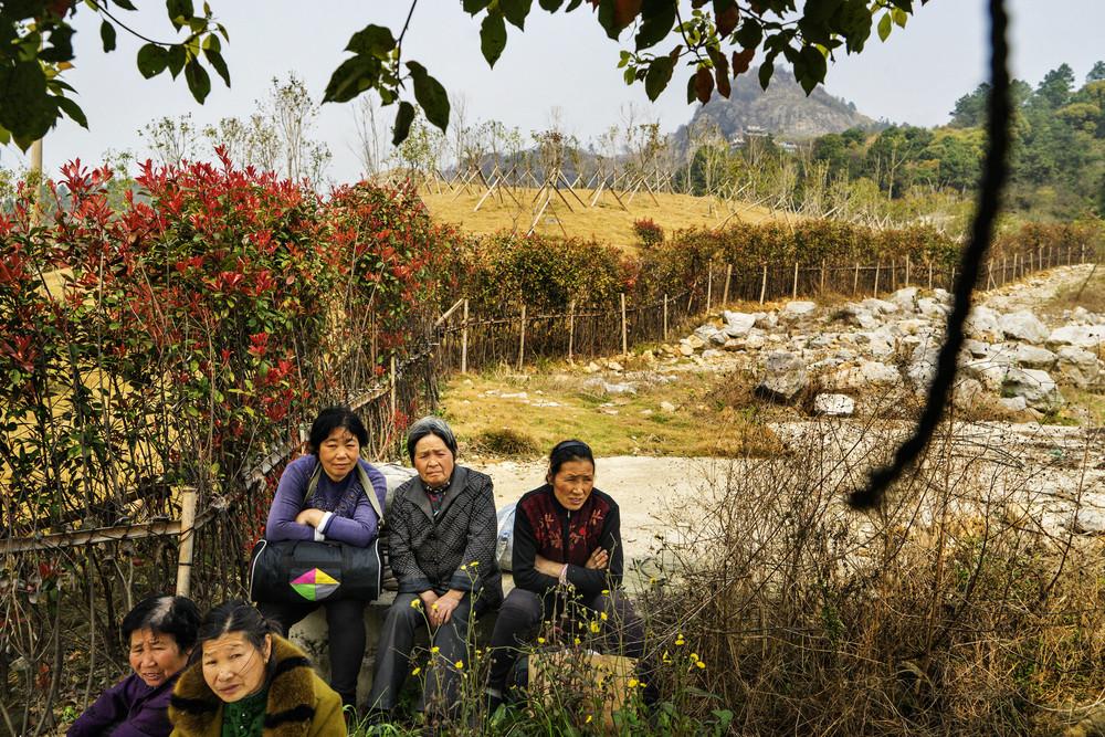 DH_CHINESE_CHRISTIANS_2015_A7_1102FIN03_2000PIX.jpg