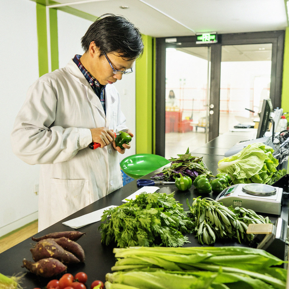 DH_CHINA_2015_ORGANIC FOOD_2362FIN_SQ_1200PIX.jpg