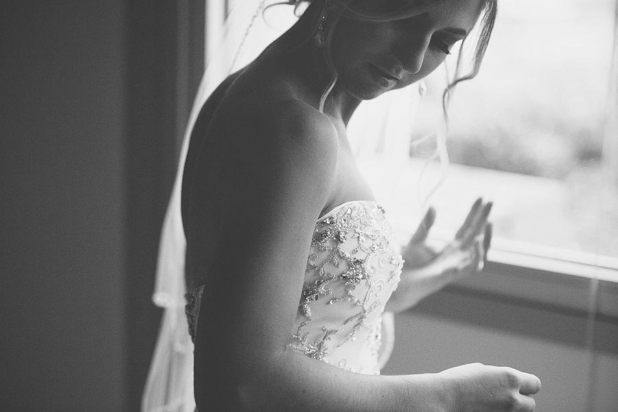 Toledo_Cleveland_Ohio_Wedding_Portrait_Photographer-21.jpg