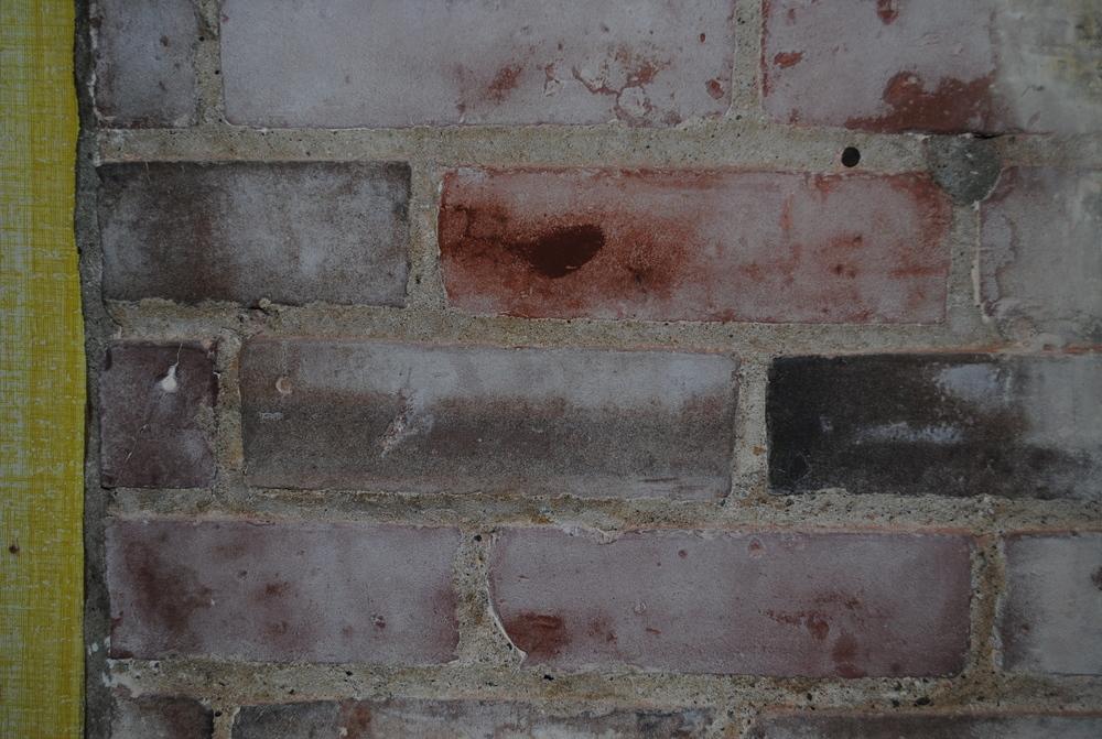Paint Stripper (paint on masonry)