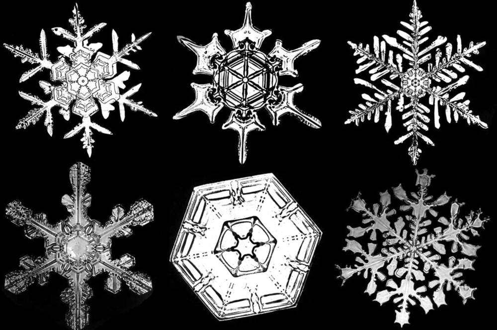 bentley_snowflakes_2.jpg