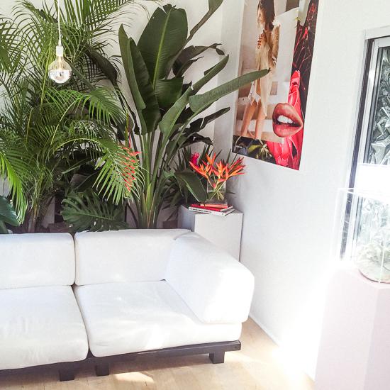 glossier-summer-fridays-showroom-13.jpg