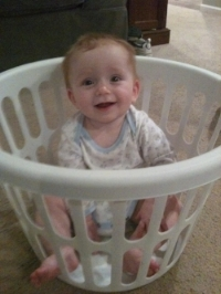 lookk who's in the laundry basket!