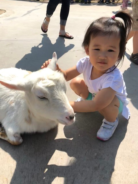 Ellie with goat at zoo.jpg