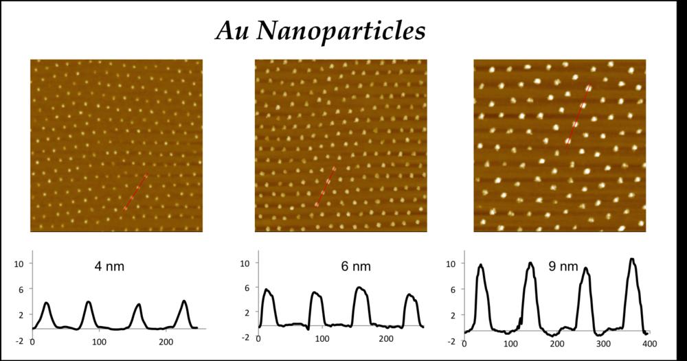 Au nanoparticles.png
