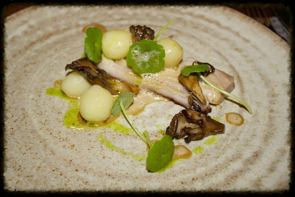 Suckling pig, mushroom cream, heritage potatoes and pennywort