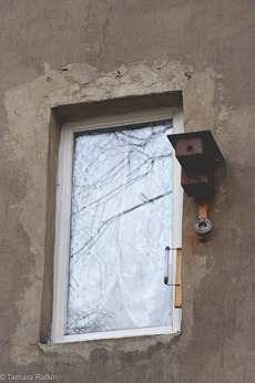 Berlin Birdhouse