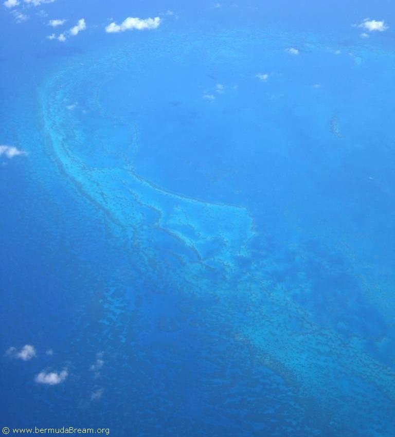 reef from air_c.jpg