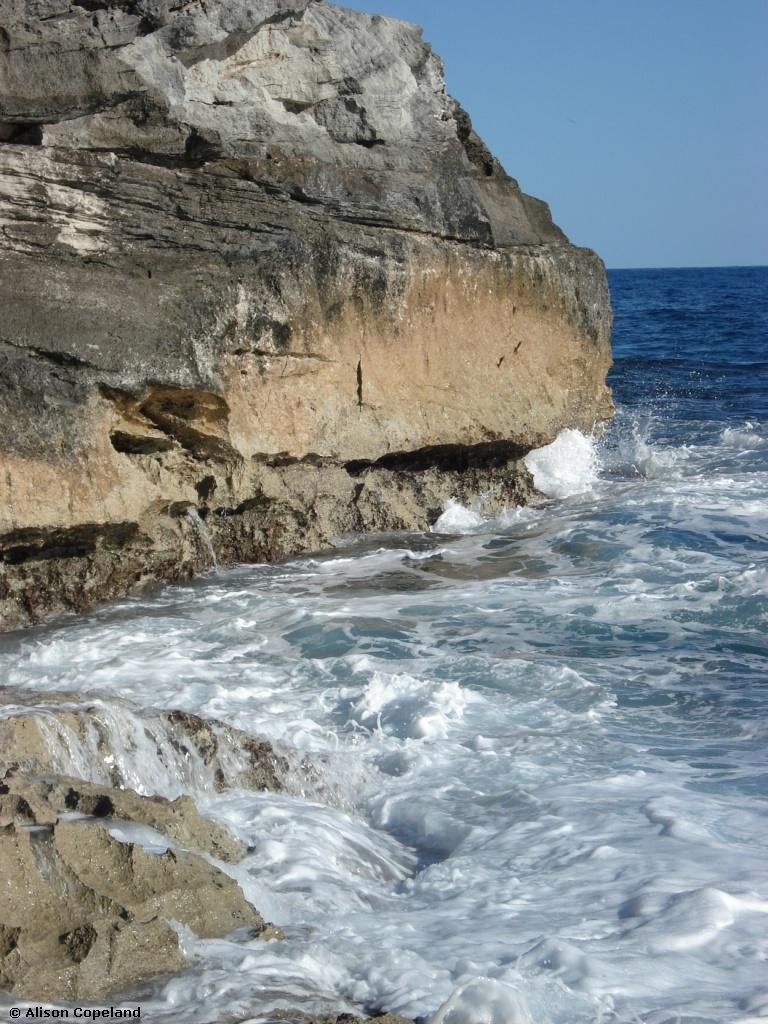 Rocky Shore, Checkerboard, Spittal Pond