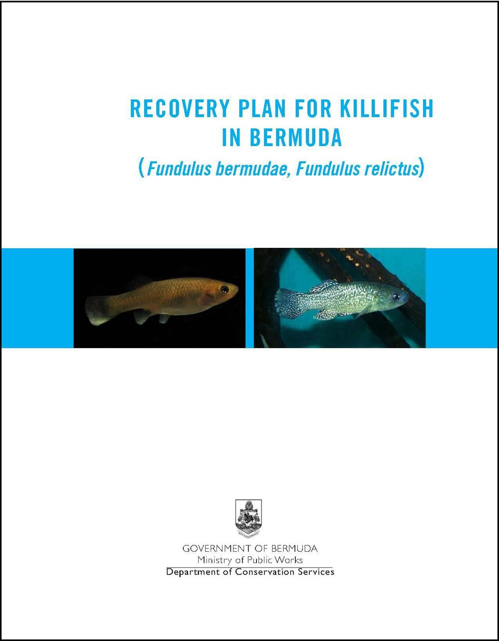 Killifish recovery plan 1112 1.jpg