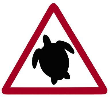 Warning to boaters regarding turtles.  Learn how to help keep them safe while enjoying yourself on and around the water.