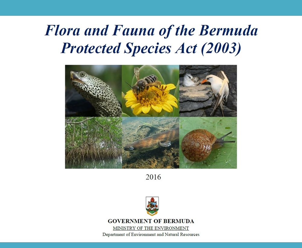 Download our recently released booklet with details about each species protected under the Protected Species Act (2003)