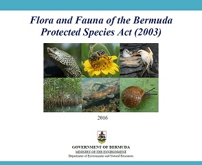 For further details about each species protected under the Protected Species Act (2003), click here to download a copy of our booklet.