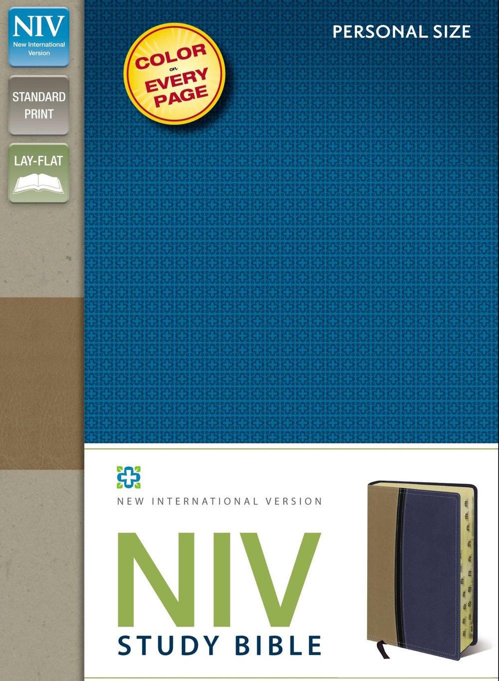 NIV Stidy.jpg