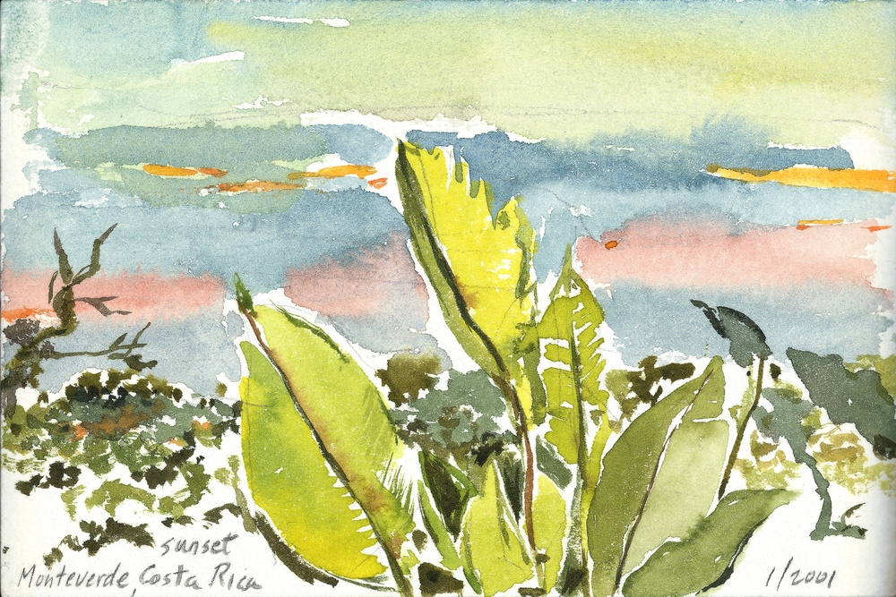 MONTEVERDE, WATERCOLOR