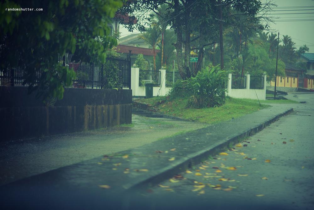 130331-Rain-003.jpg