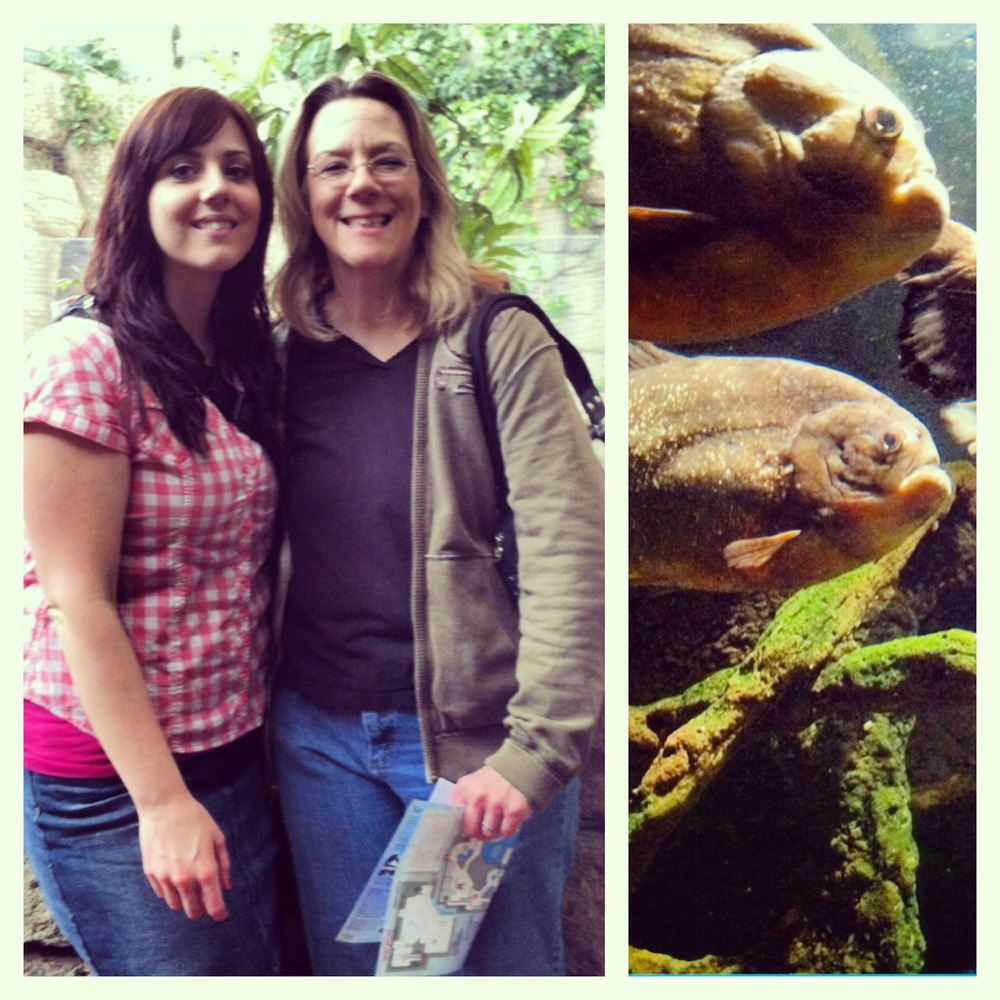 Me with my beautiful Mum on the left. On the right, a grumpy mother and daughter piranha.