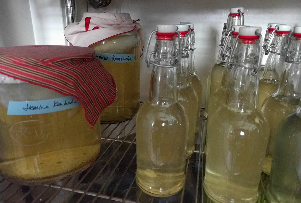 put glass jar and bottles in a warm spot out of direct sunlight to ferment—bottles should be fizzy in about 3 days (if fizzy, store in refrigerator), kombucha batch should be ready in 10-14 days