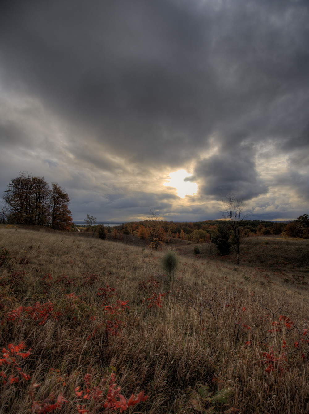 Taken with the Olympus OM-D and mZuiko 9-18mm along M37 on Old Mission Peninsula