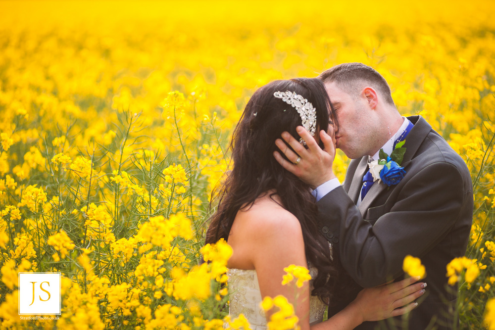A groom kisses his bride passionately in a field of yellow rapeseed.jpg