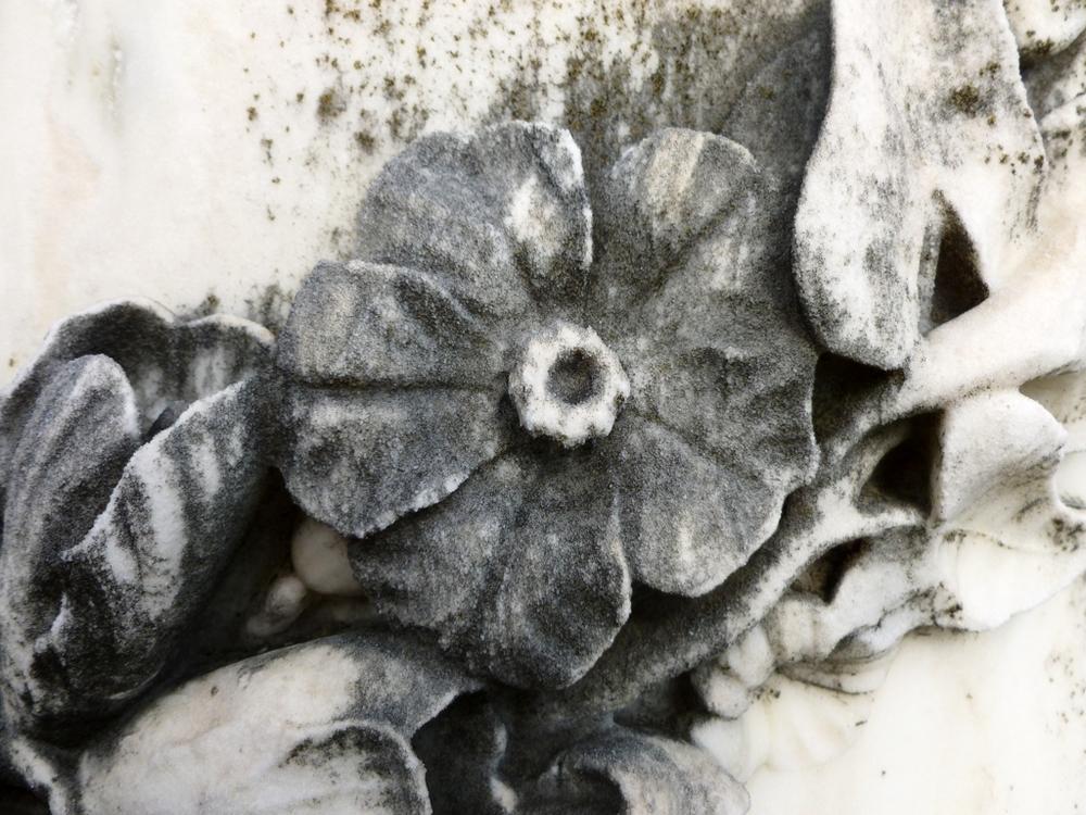 MagnoliaCemetary2.jpg