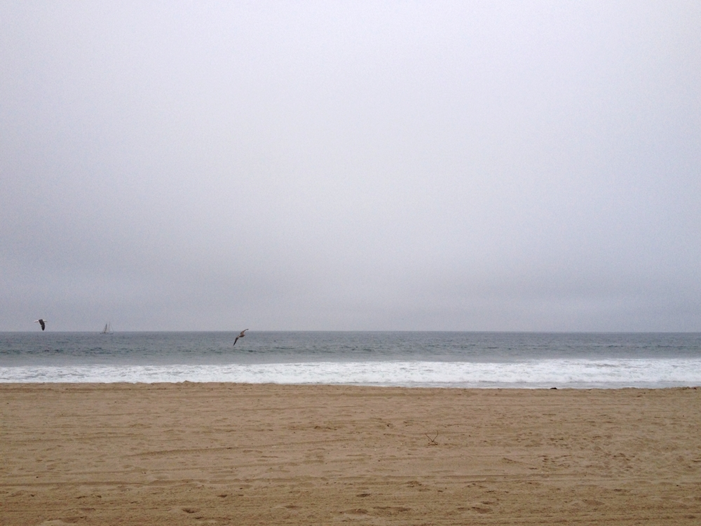 ShoreFog1.jpg