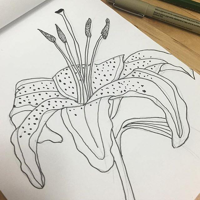 DrawingAugust 24.jpg