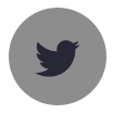 twitter button.png