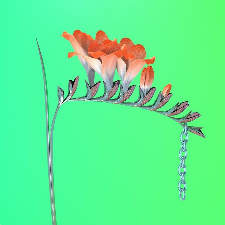 Flume6.jpg