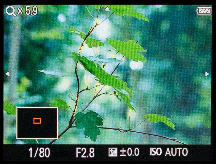 BU_130924_103118_S.jpg