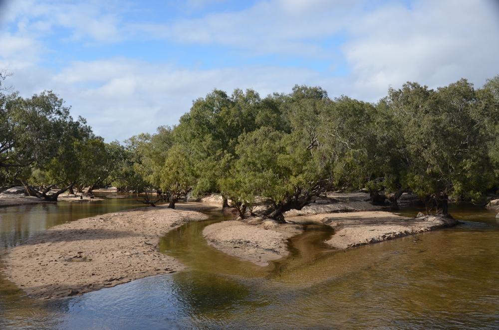 Archer River.