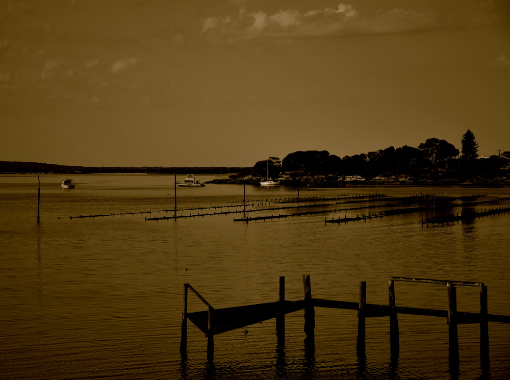 Oyster fields of Coffin Bay