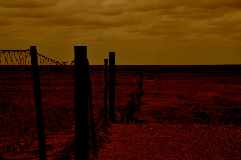 The Dog Fence that forms an unbroken barrier that stretches over 5,300 km through South Australia, Queensland and New South Wales. It is the only barrier that prevents dingoes entering the sheep grazing country in the south.