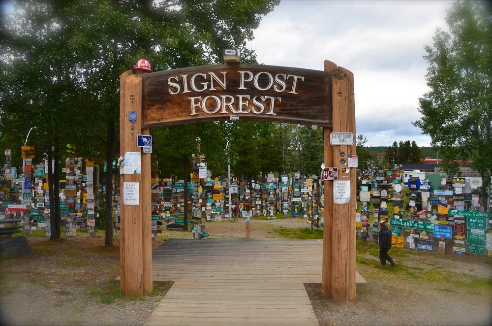 Sign Post Forest Watson Lake, Yukon Canada