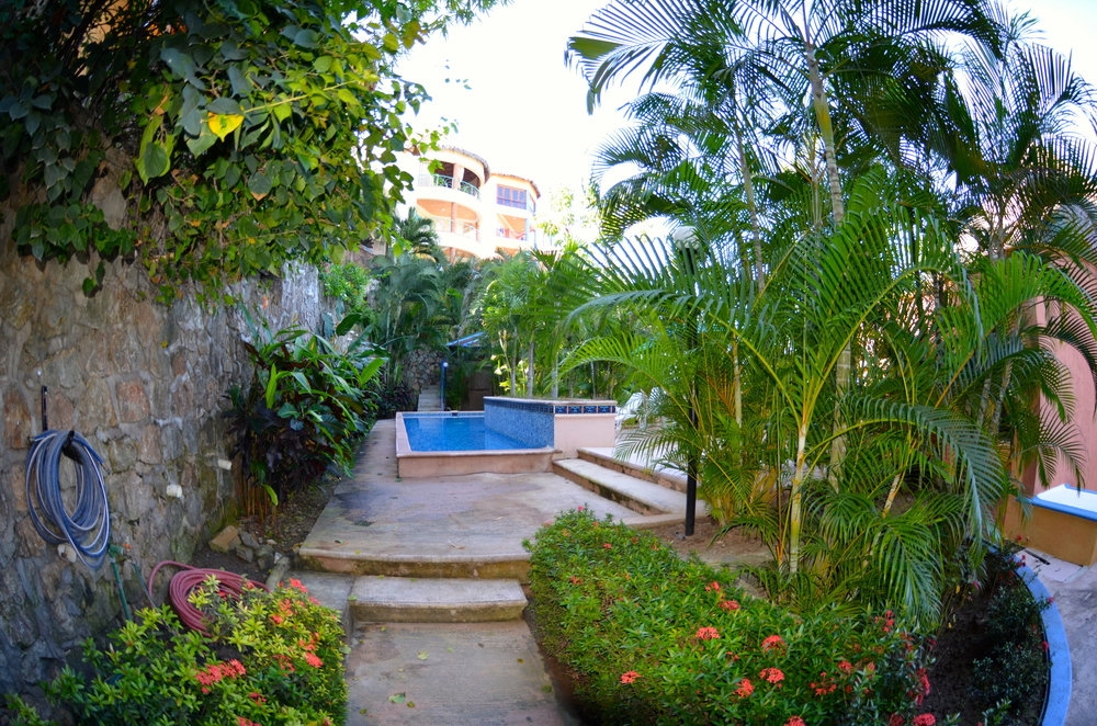 Backyard with lap pool…score!